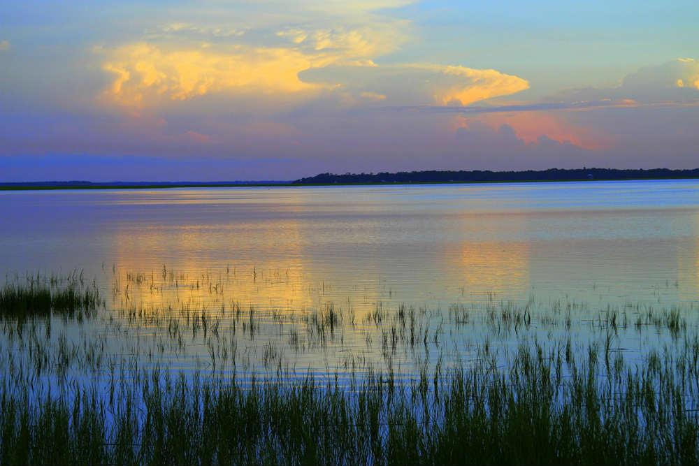 Sea Marsh