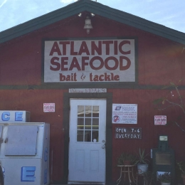 Best Seafood on the Island